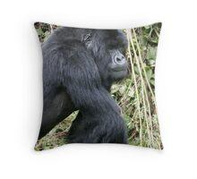 Silverback Gorilla II Throw Pillow