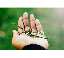 nobody,not even the rain,has such small hands. ~e.e.cummings Photographic Print