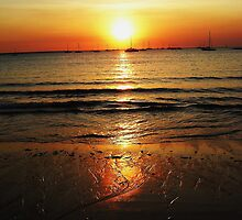 Sunset Gold by Sharon Davey