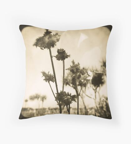 1853 Throw Pillow