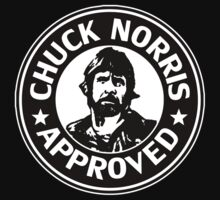 Chuck Norris Approved by Immortal-Images