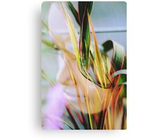 layers of beauty Canvas Print