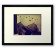 Last night I was flying on the wall and lost direction. Framed Print
