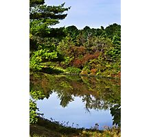 Finch Hollow Lake Landscape Photographic Print