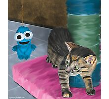 Cute Grey Kitten Looking at a Blue Doll Photographic Print