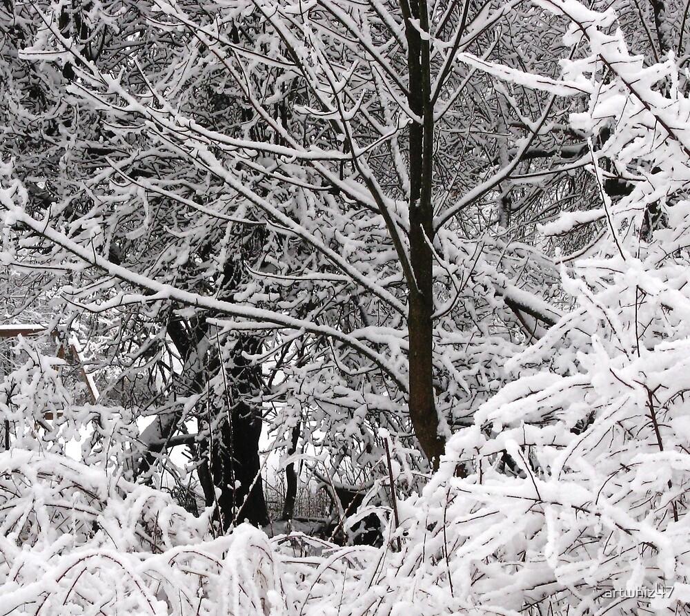 Snow Snarl by artwhiz47