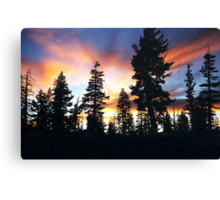 "Because He Called, ""Forest Brother..."" Canvas Print"