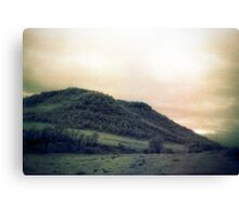 muted landscape #2 Canvas Print