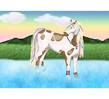 Splash The Horse Photographic Print