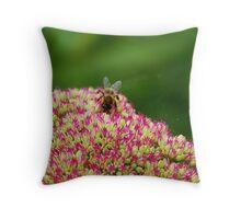 Bee on Sedum Throw Pillow