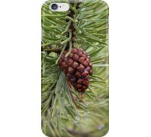 Pine Cone iPhone Case/Skin
