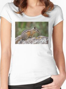 Chipmunk Women's Fitted Scoop T-Shirt