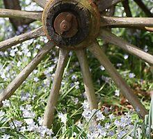 Wagon Wheel by Sharon Robertson