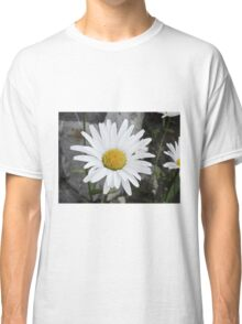 Chamomiles in the garden 4 Classic T-Shirt