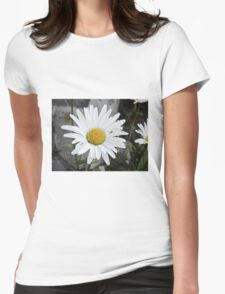 Chamomiles in the garden 4 Womens Fitted T-Shirt