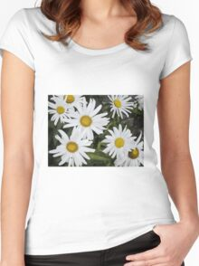Chamomiles in the garden 6 Women's Fitted Scoop T-Shirt
