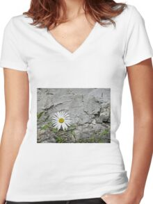 Chamomiles in the garden 7 Women's Fitted V-Neck T-Shirt