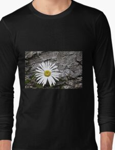 Chamomiles in the garden 8 Long Sleeve T-Shirt