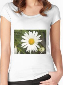 Chamomiles in the garden 10 Women's Fitted Scoop T-Shirt