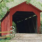 Sandy Creek Covered Bridge in Summer by barnsis