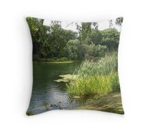 Grenadier Pond Throw Pillow