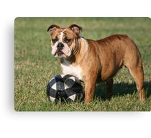 Tootie and Her Ball Canvas Print