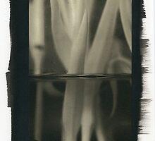 Carnation Stems  by Rene Hales