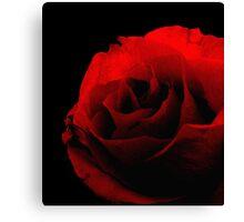 Red on Black Canvas Print