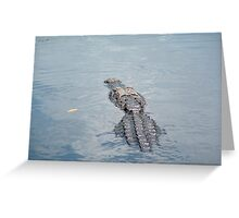 That's MR. Gator to you! Greeting Card