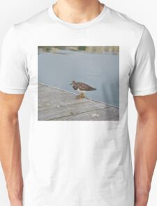 Turnstone Unisex T-Shirt