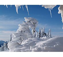 BEAUTIFUL SNOW SCULPTURES Photographic Print