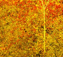 Stylized Golden and Red Shining Fall Foliage  Sticker