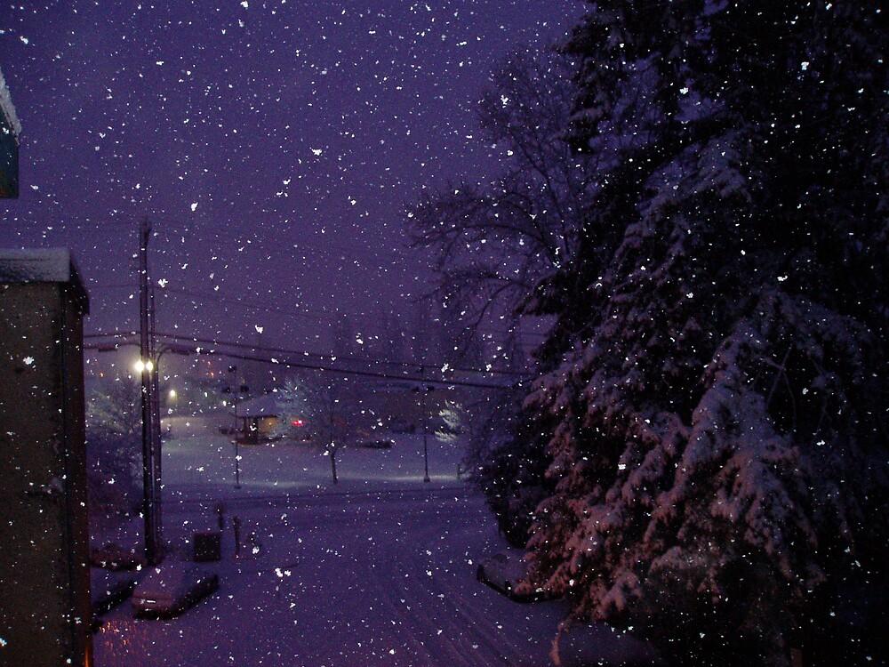 LET IT SNOW  by MsLiz