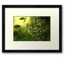 Thursday green Framed Print
