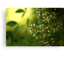 Thursday green Canvas Print
