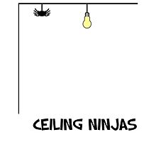 Ceiling Ninja by TwistedPenguin