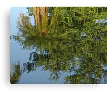 Palm Mirror Canvas Print
