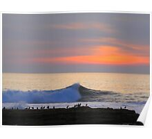 Seabirds and Waves :) Poster