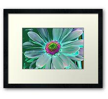Colorful Daisy Framed Print