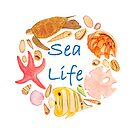 Sea Life Watercolour Illustration by joeyartist