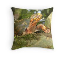 this is MY pond!!! Throw Pillow