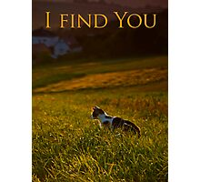 I find You Photographic Print