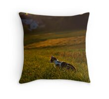 I find You Throw Pillow