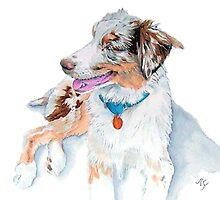 Australian Shepherd Matrix by Yvonne Carter