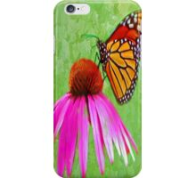 Monarch (butterfly) iPhone Case/Skin