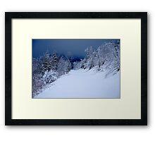 The unspoilt Forest........... Framed Print