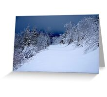 The unspoilt Forest........... Greeting Card