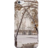 Trees of winter iPhone Case/Skin