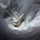 Wedding Shoe Vortex by dgscotland