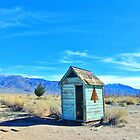 Cute Outhouse by marilyn diaz